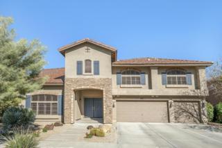 34221 N 23RD Drive, Phoenix, AZ 85085 (MLS #5579256) :: Sibbach Team - Realty One Group
