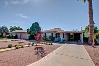 1537 W Roma Avenue, Phoenix, AZ 85015 (MLS #5579282) :: Sibbach Team - Realty One Group