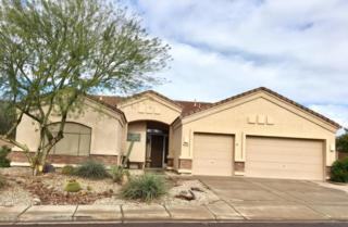9458 E Princess Drive, Mesa, AZ 85207 (MLS #5579285) :: Sibbach Team - Realty One Group