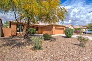 1322 E Nardini Street, San Tan Valley, AZ 85140 (MLS #5580556) :: Keller Williams Realty Phoenix