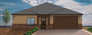 2161 E Parkway Drive #9, Phoenix, AZ 85040 (MLS #5580672) :: Keller Williams Realty Phoenix