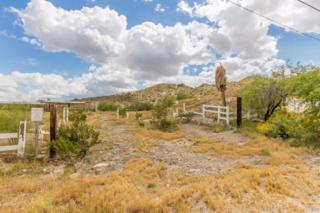 9833 S 7TH Avenue, Phoenix, AZ 85041 (MLS #5581345) :: Keller Williams Realty Phoenix