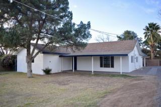 816 N Heritage Street, Mesa, AZ 85201 (MLS #5581551) :: Group 46:10