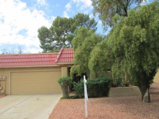 11832 S Tonopah Drive, Phoenix, AZ 85044 (MLS #5581556) :: Group 46:10