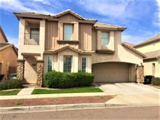 5208 W Warner Street, Phoenix, AZ 85043 (MLS #5588296) :: Cambridge Properties