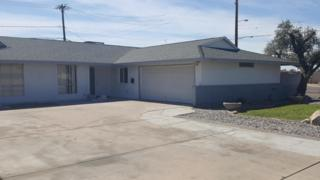 3443 W Belmont Avenue, Phoenix, AZ 85051 (MLS #5591967) :: Cambridge Properties