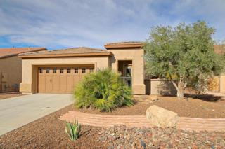 27662 N Makena Place, Peoria, AZ 85383 (MLS #5595003) :: Cambridge Properties