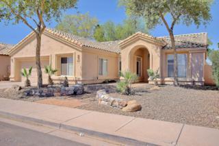 720 N Madrid Lane, Chandler, AZ 85226 (MLS #5595021) :: Cambridge Properties