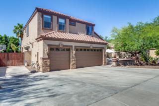2031 E Topeka Drive, Phoenix, AZ 85024 (MLS #5604988) :: Cambridge Properties