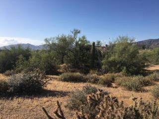 37140 N Winding Wash Trail, Carefree, AZ 85377 (MLS #5605825) :: Arizona Best Real Estate
