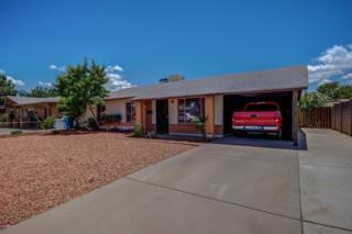5207 W Monte Vista Road, Phoenix, AZ 85035 (MLS #5606561) :: Cambridge Properties