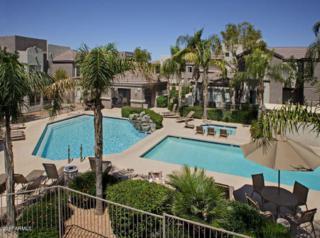 17017 N 12TH Street #2080, Phoenix, AZ 85022 (MLS #5608357) :: Cambridge Properties