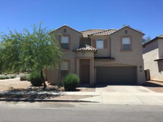 9003 W Preston Lane, Tolleson, AZ 85353 (MLS #5609106) :: Group 46:10