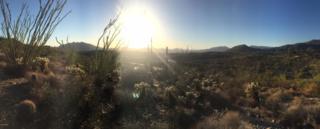 39307 N Silver Saddle Drive, Carefree, AZ 85377 (MLS #5609456) :: Arizona Best Real Estate