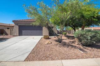 10563 E Bluebird Mine Court, Gold Canyon, AZ 85118 (MLS #5609492) :: The Pete Dijkstra Team