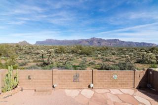 10874 E Secret Canyon Road, Gold Canyon, AZ 85118 (MLS #5609573) :: The Pete Dijkstra Team