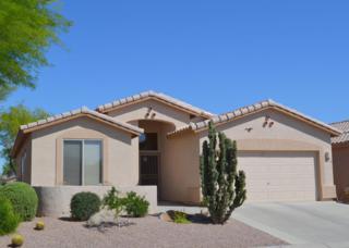 6405 S Palo Blanco Drive, Gold Canyon, AZ 85118 (MLS #5609760) :: The Pete Dijkstra Team