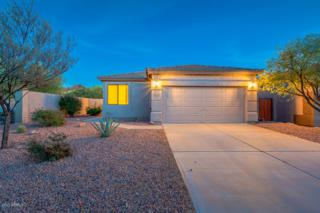 6839 E San Cristobal Way, Gold Canyon, AZ 85118 (MLS #5609815) :: The Pete Dijkstra Team