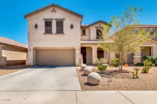 45611 W Barbara Lane, Maricopa, AZ 85139 (MLS #5609869) :: Group 46:10