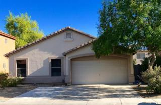 12809 W Edgemont Avenue, Avondale, AZ 85392 (MLS #5609886) :: Group 46:10