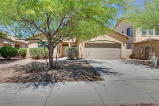 44112 W Buckhorn Trail, Maricopa, AZ 85138 (MLS #5609942) :: Group 46:10