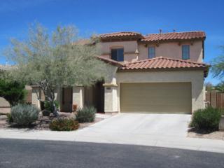13162 W Creosote Drive, Peoria, AZ 85383 (MLS #5610026) :: Group 46:10