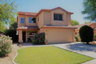 2275 E Pinto Drive, Gilbert, AZ 85296 (MLS #5610086) :: Group 46:10