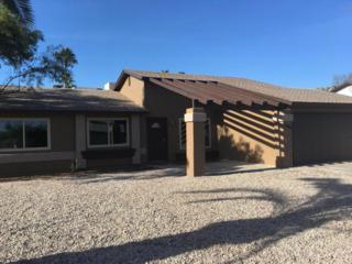 2306 E Farmdale Circle, Mesa, AZ 85204 (MLS #5610103) :: Group 46:10