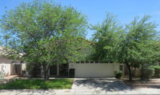 775 N Surfside Drive, Gilbert, AZ 85233 (MLS #5610105) :: Group 46:10