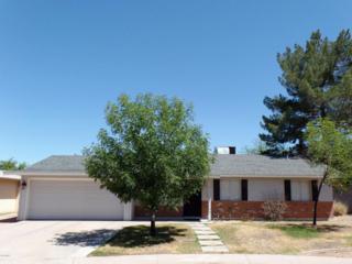 3546 E Capri Avenue E, Mesa, AZ 85204 (MLS #5610144) :: Group 46:10