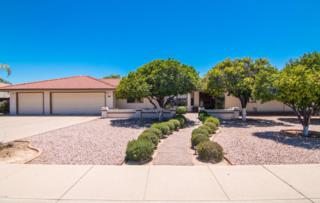 4023 E Grandview Street, Mesa, AZ 85205 (MLS #5610201) :: Group 46:10