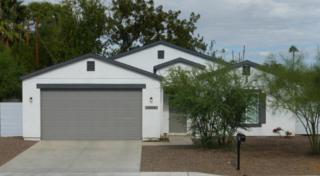 909 E Fremont Road, Phoenix, AZ 85042 (MLS #5610202) :: Group 46:10