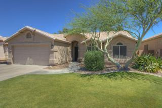 9152 W Paradise Lane, Peoria, AZ 85382 (MLS #5610235) :: Group 46:10