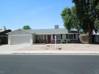 3130 E Diamond Avenue, Mesa, AZ 85204 (MLS #5610261) :: Group 46:10