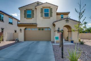 12992 N 94th Avenue, Peoria, AZ 85381 (MLS #5610288) :: Group 46:10