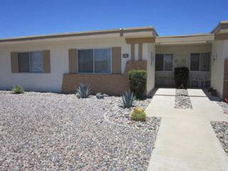 10114 W Campana Drive, Sun City, AZ 85351 (MLS #5610293) :: Group 46:10
