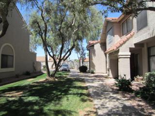 500 N Roosevelt Avenue #108, Chandler, AZ 85226 (MLS #5610312) :: Group 46:10