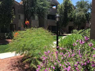 3830 E Lakewood Parkway E #1141, Phoenix, AZ 85048 (MLS #5610589) :: Cambridge Properties