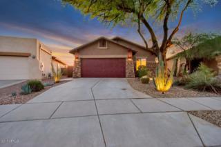10284 E Meandering Trail Lane, Gold Canyon, AZ 85118 (MLS #5610664) :: The Pete Dijkstra Team