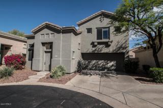 29821 N 41ST Street, Cave Creek, AZ 85331 (MLS #5611238) :: Arizona Best Real Estate