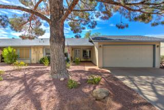 11648 S Jokake Street, Phoenix, AZ 85044 (MLS #5611587) :: Keller Williams Realty Phoenix