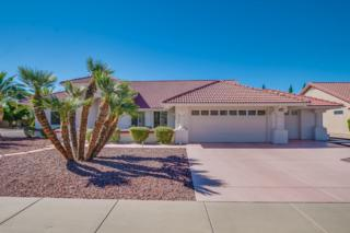 14403 W Whitewood Drive, Sun City West, AZ 85375 (MLS #5611624) :: Keller Williams Realty Phoenix