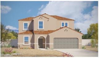 42102 W Rojo Street, Maricopa, AZ 85138 (MLS #5611639) :: The Pete Dijkstra Team