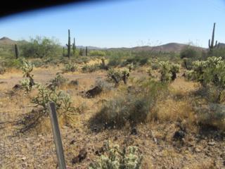 3011 E Rockaway Hills Road, Cave Creek, AZ 85331 (MLS #5611687) :: Arizona Best Real Estate