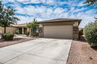 105 W Santa Gertrudis Trail, San Tan Valley, AZ 85143 (MLS #5611694) :: The Pete Dijkstra Team