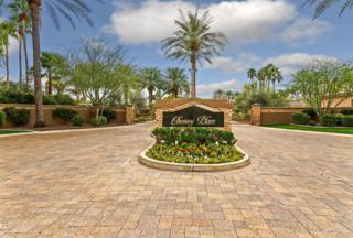 7320 N 71ST Street, Paradise Valley, AZ 85253 (MLS #5611716) :: Arizona Best Real Estate