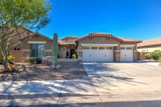 1364 E Grand Canyon Drive, Chandler, AZ 85249 (MLS #5611818) :: Keller Williams Realty Phoenix