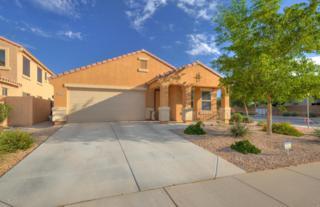 41269 W Brandt Drive, Maricopa, AZ 85138 (MLS #5611822) :: The Pete Dijkstra Team