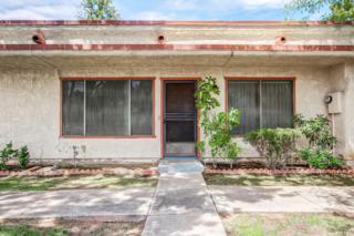 8826 N New World Drive, Glendale, AZ 85302 (MLS #5611904) :: Arizona Best Real Estate