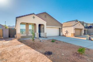 3979 W Alabama Lane, Queen Creek, AZ 85142 (MLS #5611914) :: The Pete Dijkstra Team